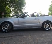 Wayne Albert / Mustang GT  2007