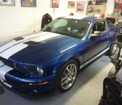 Roland Thériault /  Mustang Shelby GT500  2008