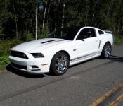 Gilles Duquet / Mustang GT/CS 2014