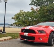 Maryse Payeur / Mustang Shelby GT500 2011