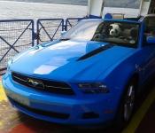 Martin Gaudreault / Mustang 2011
