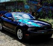 Sandy Simard / Mustang 2014