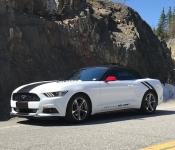 Real Bonneau / Mustang 2017