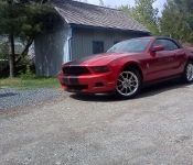 Mustang 2011 / Bernard Godin