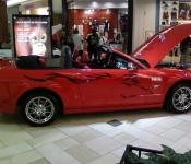 Jocelyn Fiset / Mustang GT 2006
