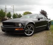 Mustang Bullitt 2008 / Pierre Gélinas