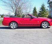 Mustang 2007 / Raymond Blais