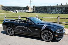 Mustang GT/CS 5.0 2014