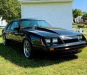 Benoît Roy / Mustang LX 1985
