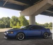 Sylva David / Mustang Mach 1 2003