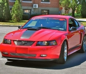 Mario Viau / Mustang Mach 1 2003