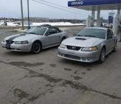 Peter Sanschagrin / Mustang GT 2000 & Mustang 2001