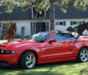Bruno Lévesque / Mustang GT 2010