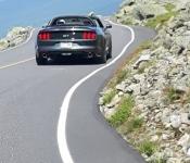 Mustang GT 5.0 l / 2015