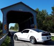 Mustang GT/CS V8 5.0 l / 2014