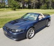 Steve Martin / Mustang GT 2002