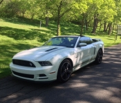 Dominic Fortin / Mustang GT/CS 2014