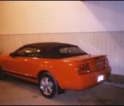 Mustang 2007 / Évariste Dion