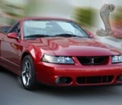 Lucien Lagrange / Mustang SVT Cobra 2004